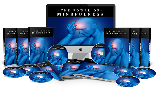 The Power of Mindfulness PLR